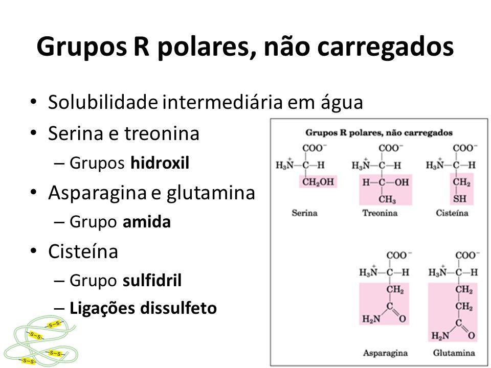 Grupos R polares, não carregados