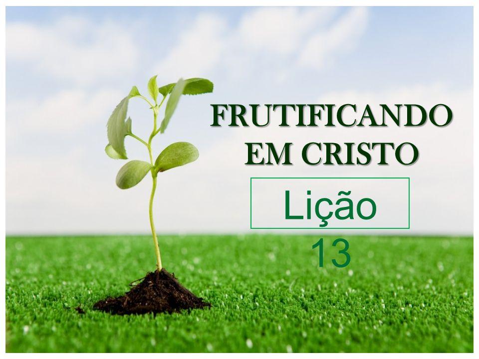 FRUTIFICANDO EM CRISTO