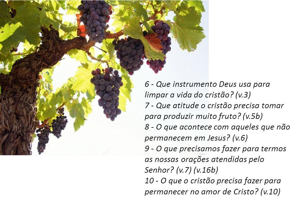 6 - Que instrumento Deus usa para limpar a vida do cristão (v.3)