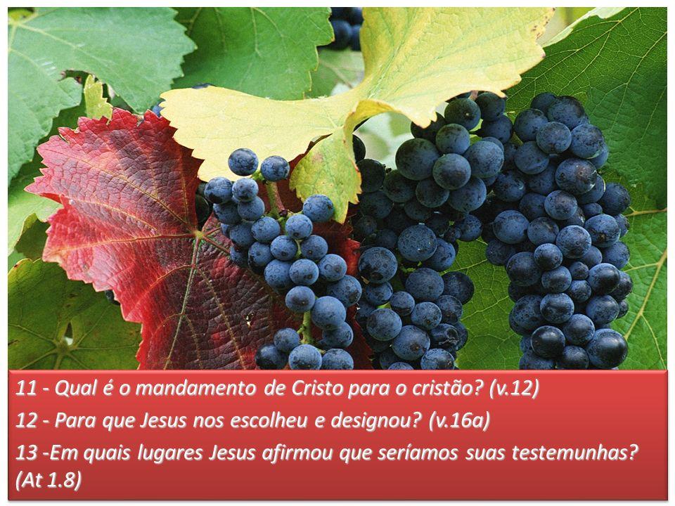 11 - Qual é o mandamento de Cristo para o cristão (v.12)