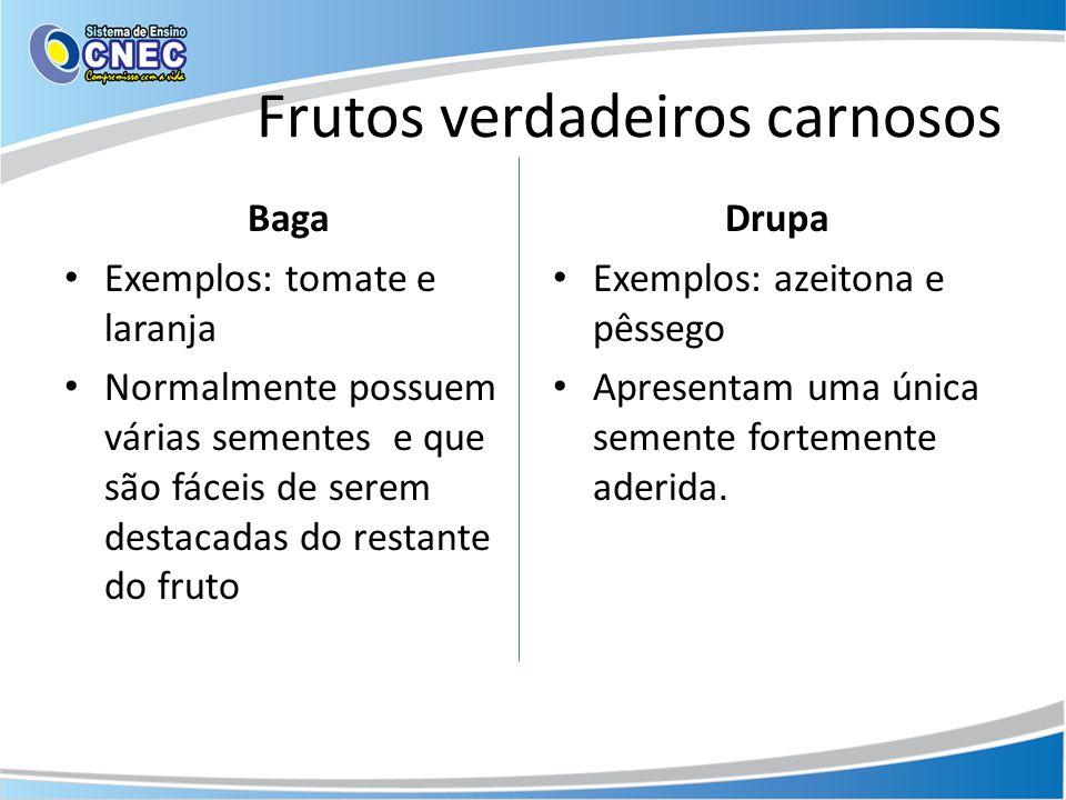 Frutos verdadeiros carnosos