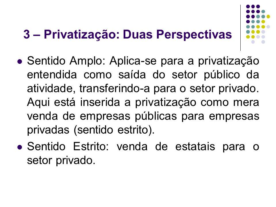 3 – Privatização: Duas Perspectivas