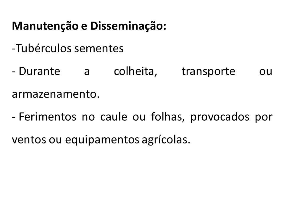 Manutenção e Disseminação: