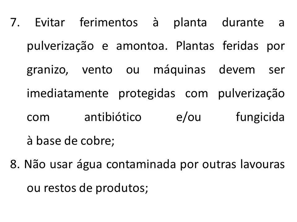 7. Evitar ferimentos à planta durante a pulverização e amontoa