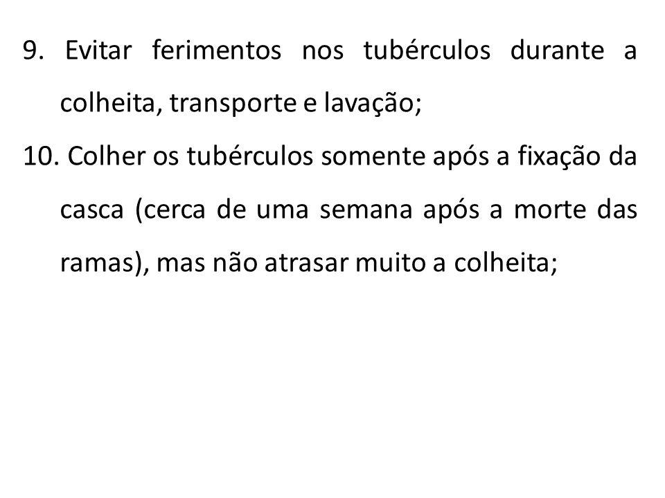 9. Evitar ferimentos nos tubérculos durante a colheita, transporte e lavação;