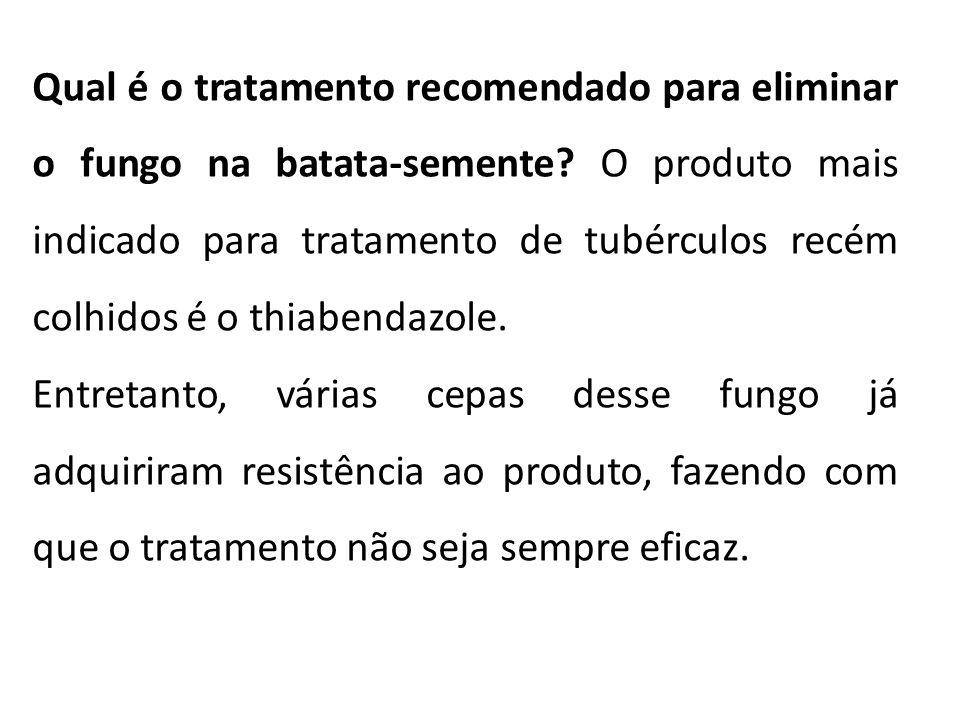 Qual é o tratamento recomendado para eliminar o fungo na batata-semente O produto mais indicado para tratamento de tubérculos recém colhidos é o thiabendazole.