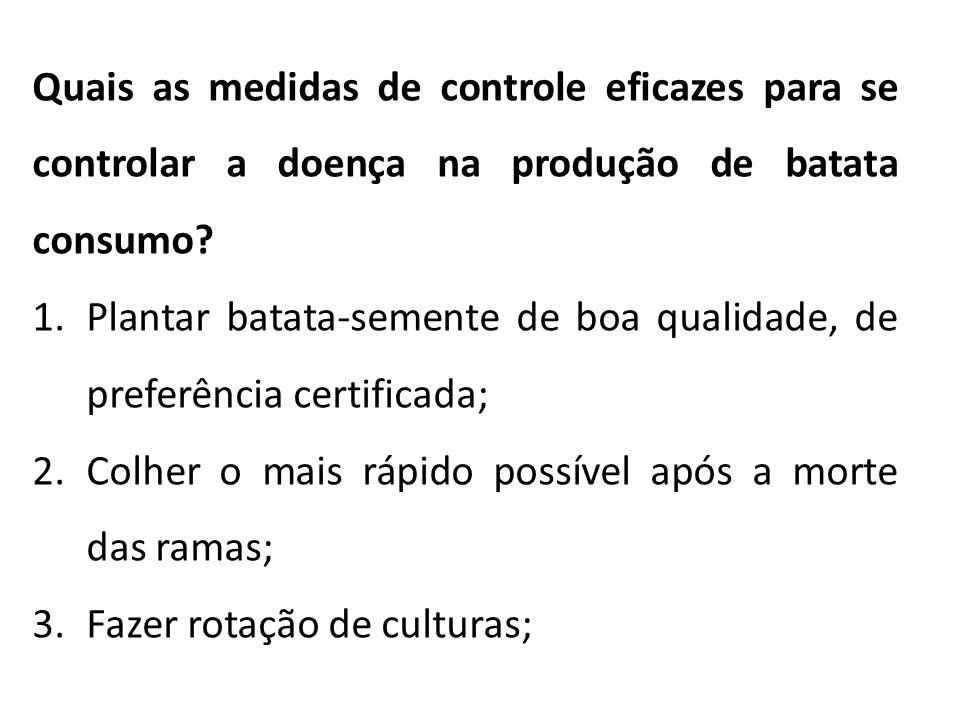 Quais as medidas de controle eficazes para se controlar a doença na produção de batata consumo