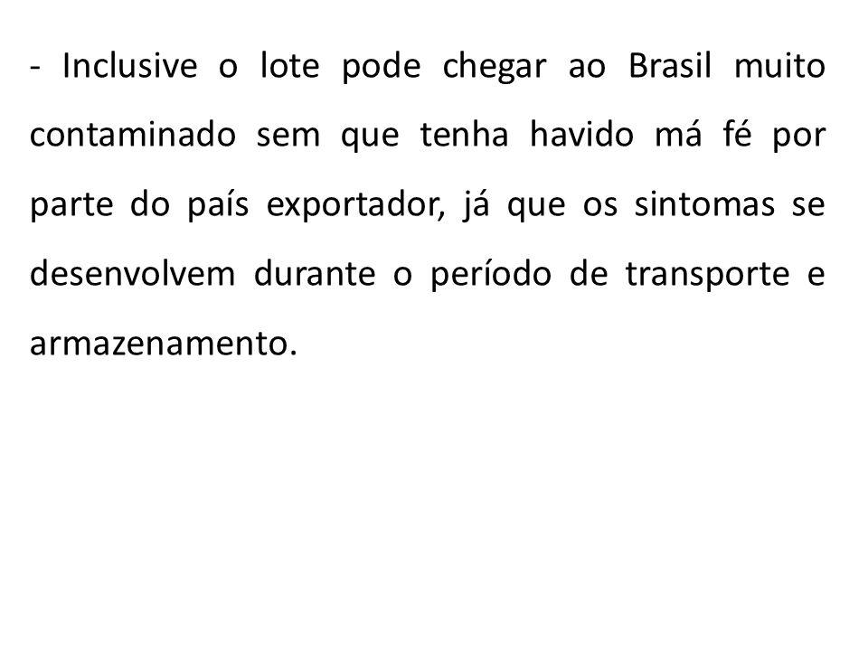 - Inclusive o lote pode chegar ao Brasil muito contaminado sem que tenha havido má fé por parte do país exportador, já que os sintomas se desenvolvem durante o período de transporte e armazenamento.