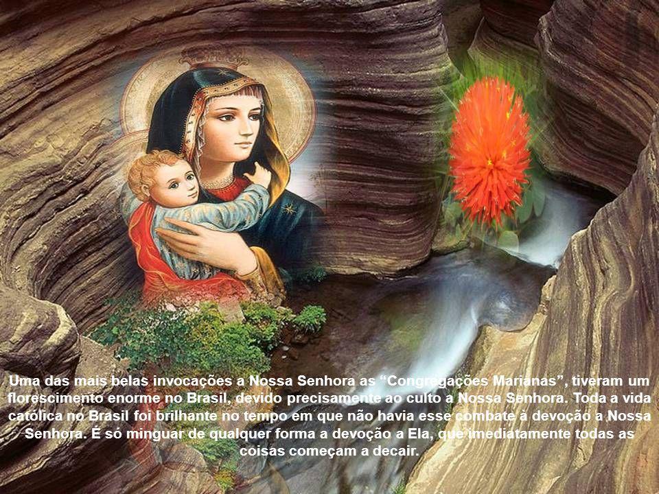 Uma das mais belas invocações a Nossa Senhora as Congregações Marianas , tiveram um florescimento enorme no Brasil, devido precisamente ao culto a Nossa Senhora.