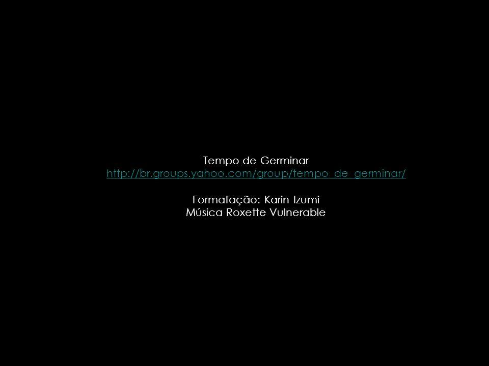 Formatação: Karin Izumi Música Roxette Vulnerable