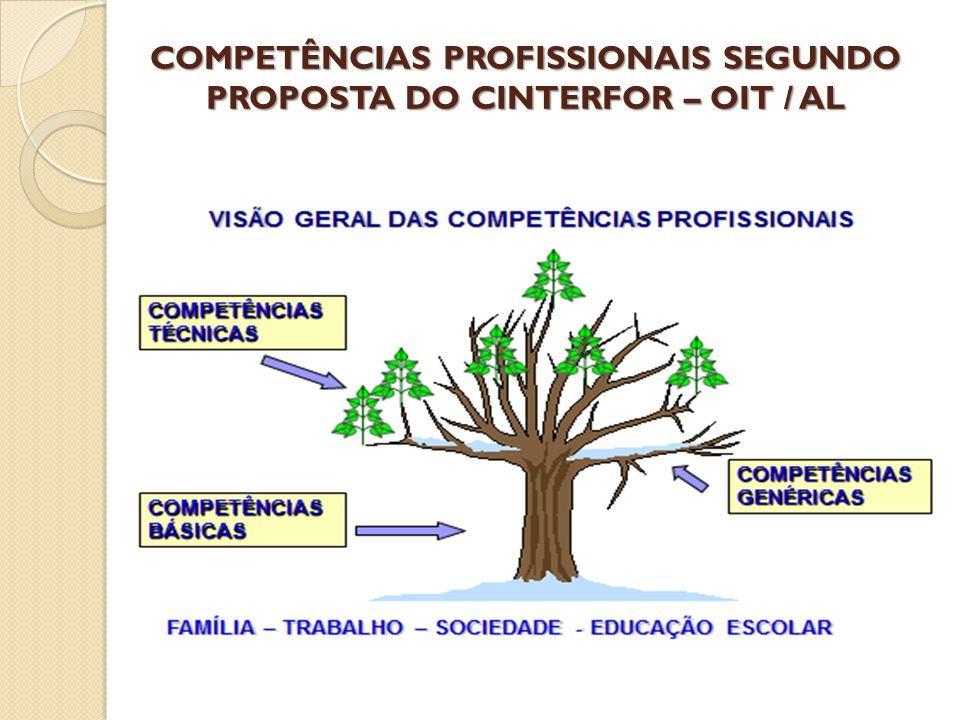 COMPETÊNCIAS PROFISSIONAIS SEGUNDO PROPOSTA DO CINTERFOR – OIT / AL