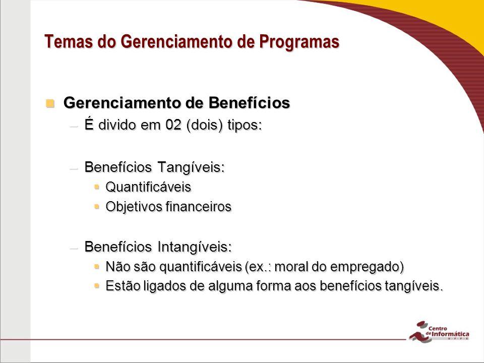 Temas do Gerenciamento de Programas