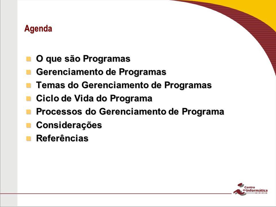 Agenda O que são Programas. Gerenciamento de Programas. Temas do Gerenciamento de Programas. Ciclo de Vida do Programa.