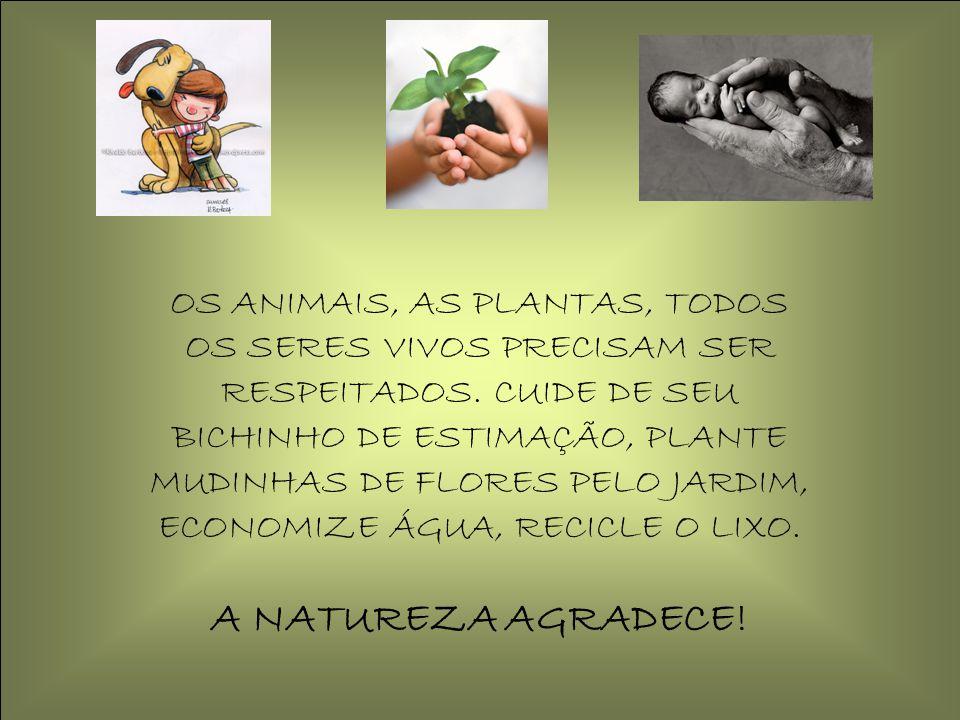 OS ANIMAIS, AS PLANTAS, TODOS OS SERES VIVOS PRECISAM SER RESPEITADOS