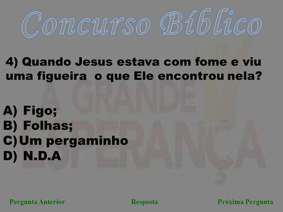 Concurso Bíblico Figo; Folhas; Um pergaminho N.D.A