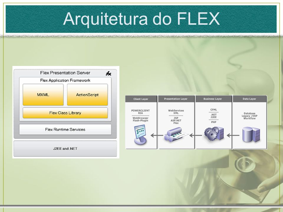 Arquitetura do FLEX
