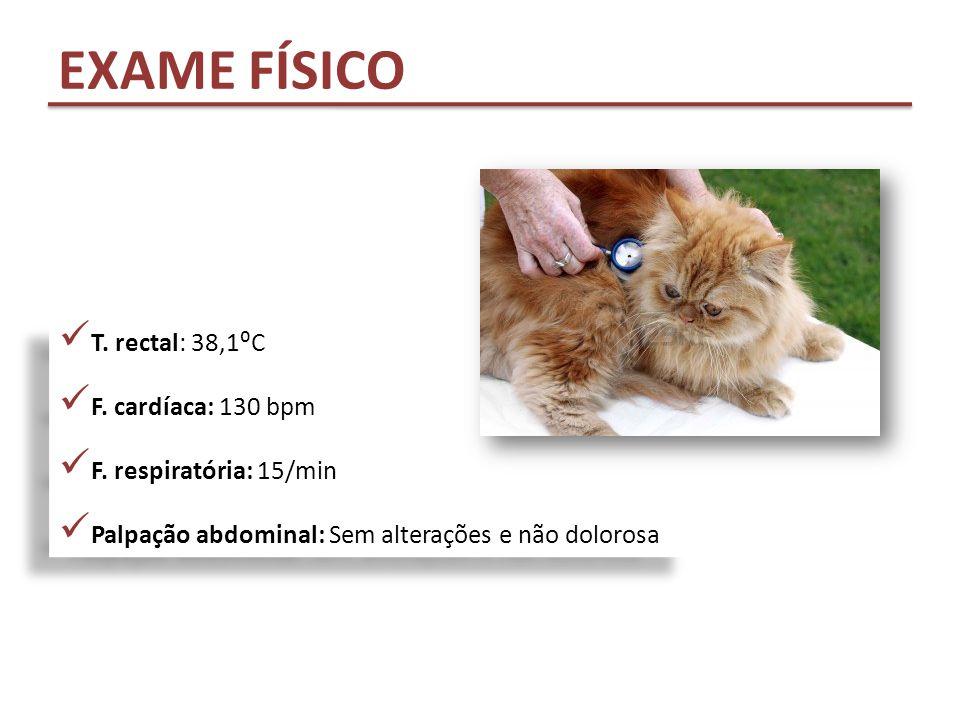 EXAME FÍSICO T. rectal: 38,1⁰C F. cardíaca: 130 bpm
