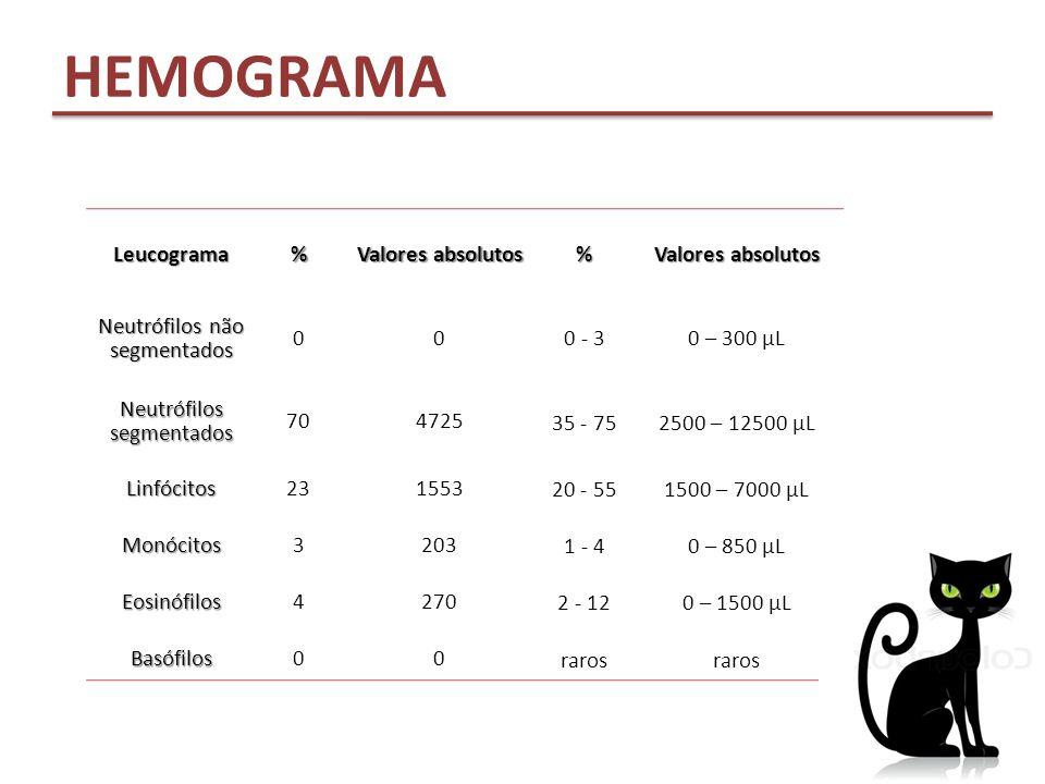 HEMOGRAMA Leucograma % Valores absolutos Neutrófilos não segmentados