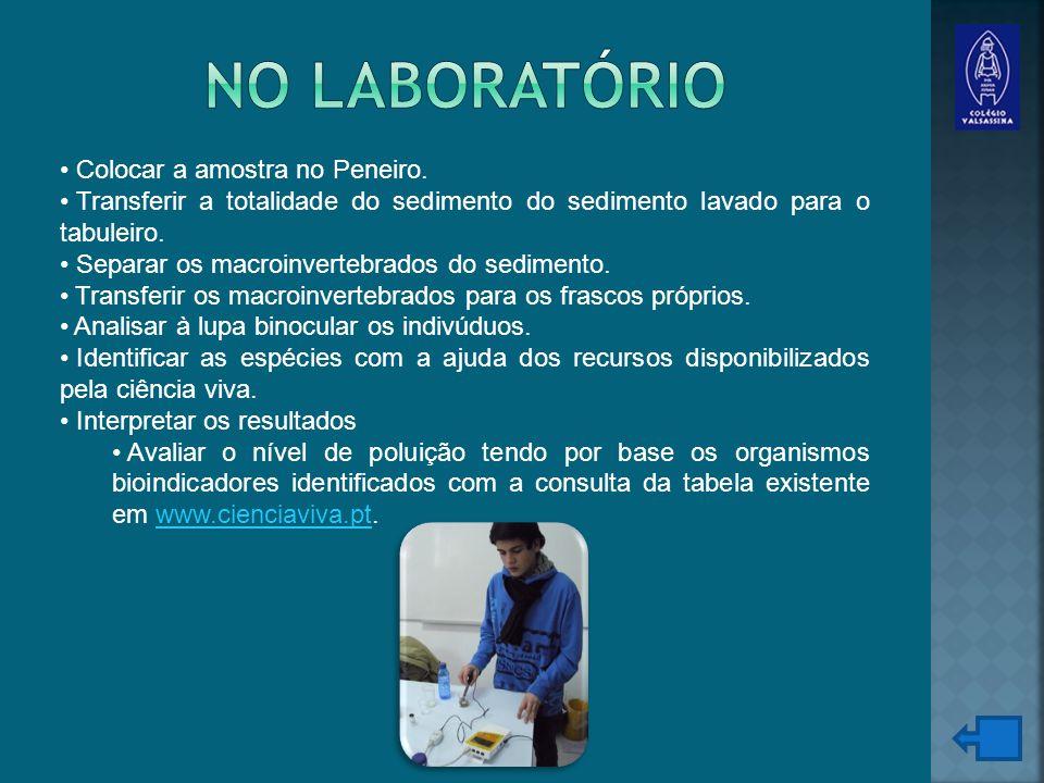 No Laboratório Colocar a amostra no Peneiro.