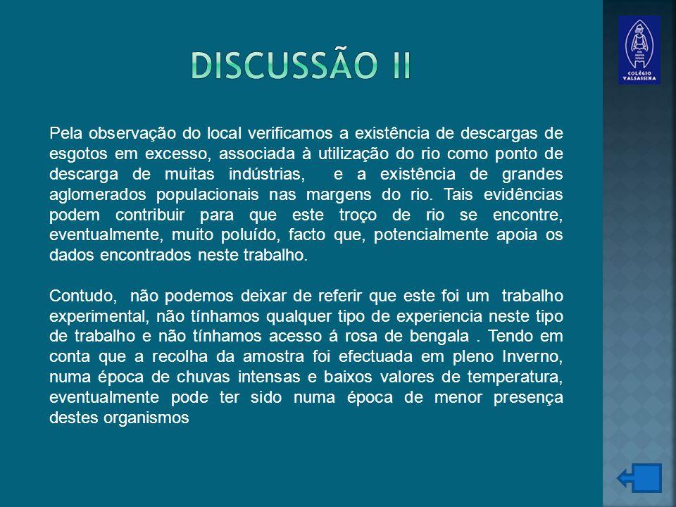Discussão II