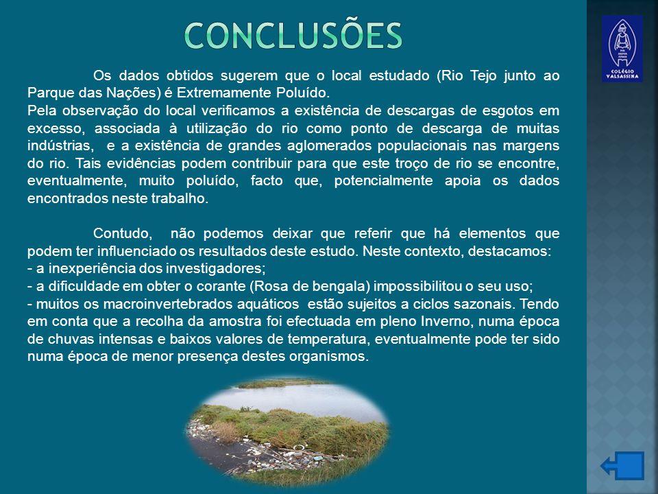 Conclusões Os dados obtidos sugerem que o local estudado (Rio Tejo junto ao Parque das Nações) é Extremamente Poluído.