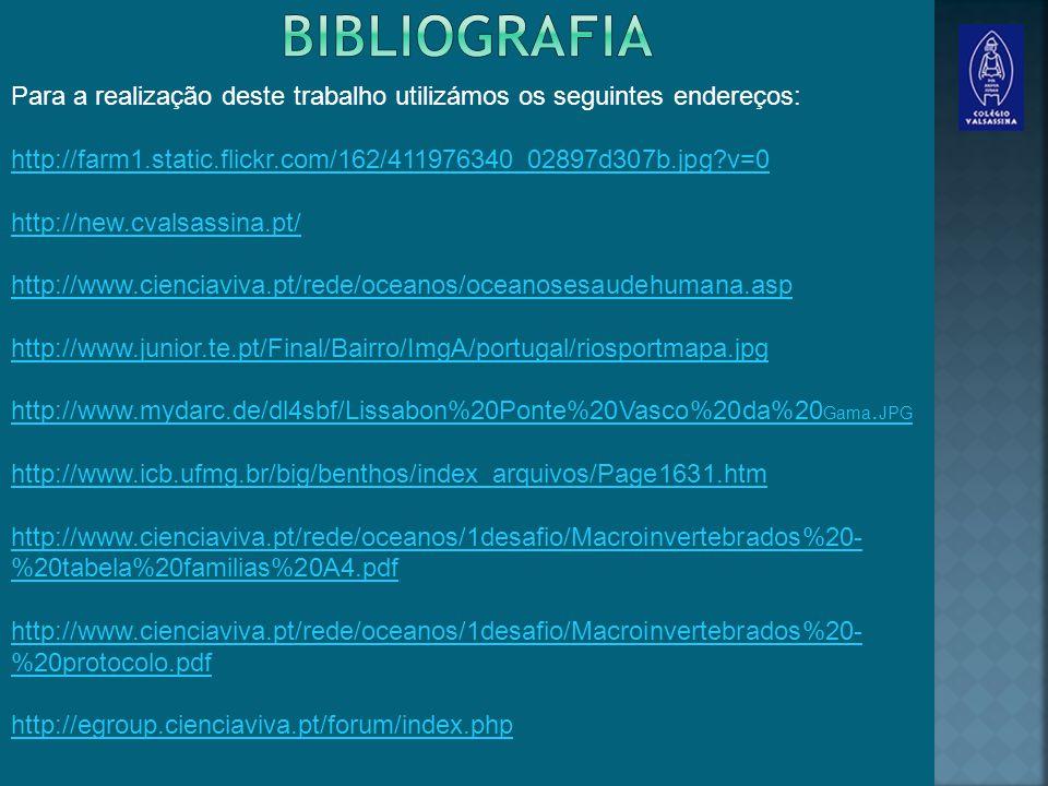 bibliografia Para a realização deste trabalho utilizámos os seguintes endereços: http://farm1.static.flickr.com/162/411976340_02897d307b.jpg?v=0.