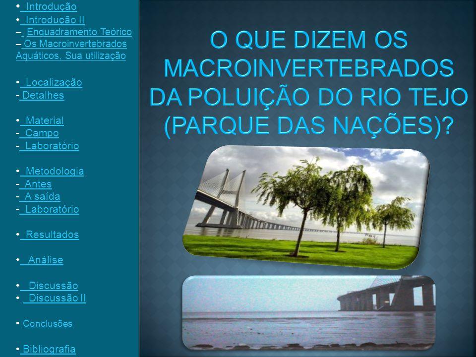 Introdução Introdução II. Enquadramento Teórico. Os Macroinvertebrados Aquáticos, Sua utilização.