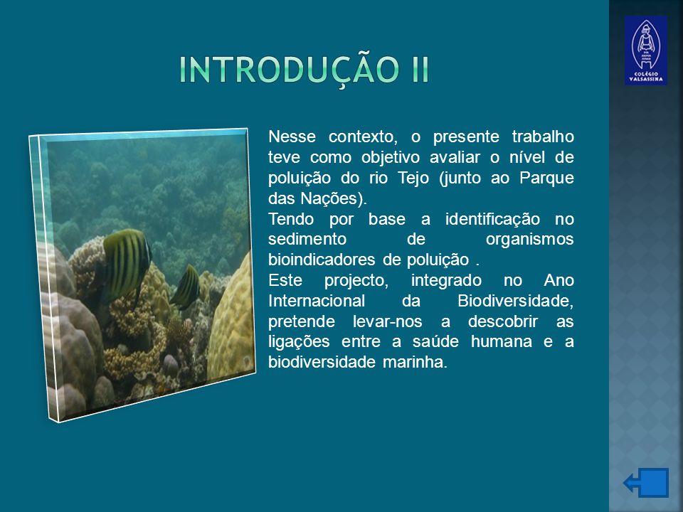 Introdução II Nesse contexto, o presente trabalho teve como objetivo avaliar o nível de poluição do rio Tejo (junto ao Parque das Nações).