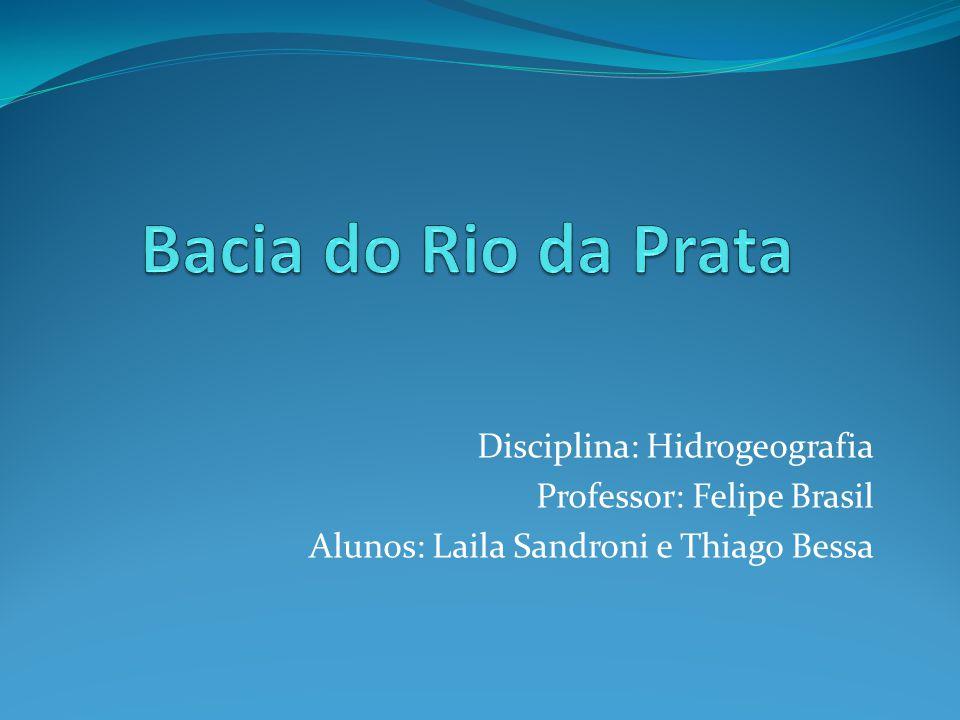 Bacia do Rio da Prata Disciplina: Hidrogeografia