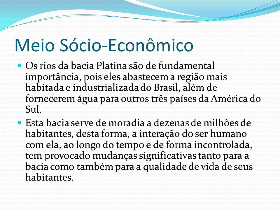 Meio Sócio-Econômico