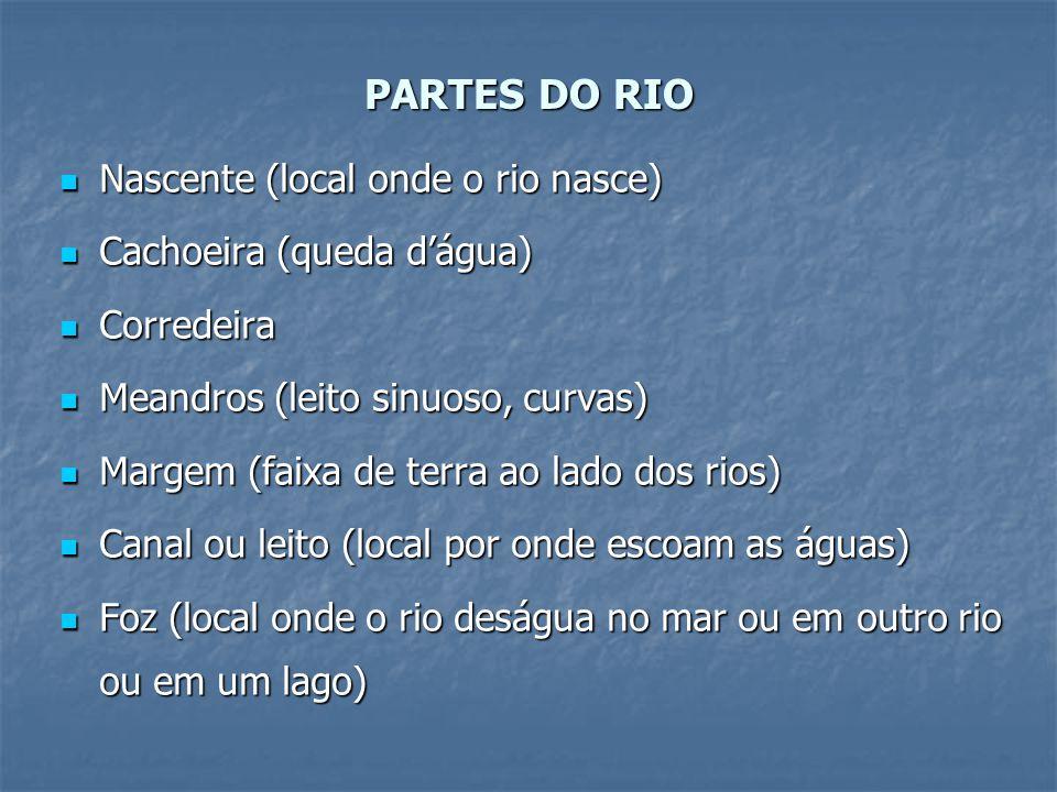 PARTES DO RIO Nascente (local onde o rio nasce)