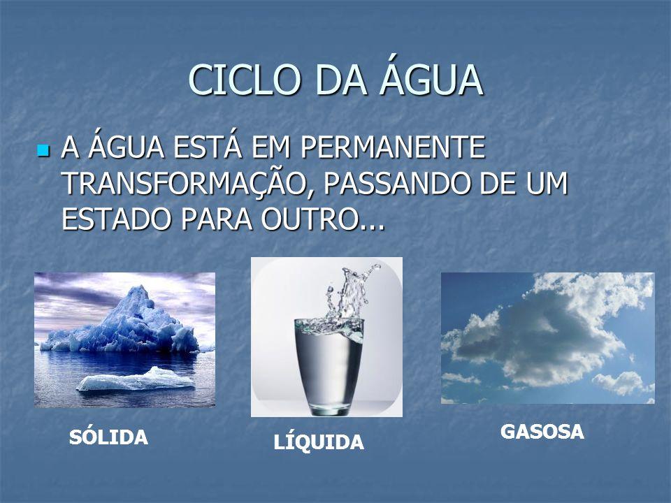 CICLO DA ÁGUA A ÁGUA ESTÁ EM PERMANENTE TRANSFORMAÇÃO, PASSANDO DE UM ESTADO PARA OUTRO... GASOSA.