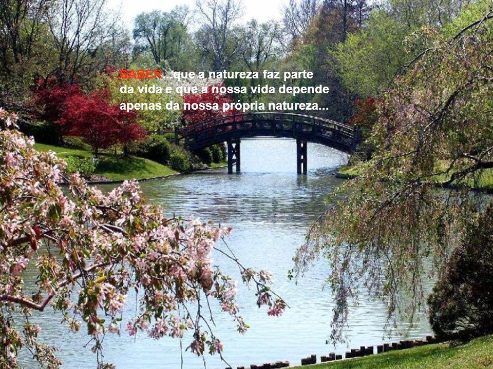 SABER...que a natureza faz parte da vida e que a nossa vida depende apenas da nossa própria natureza...