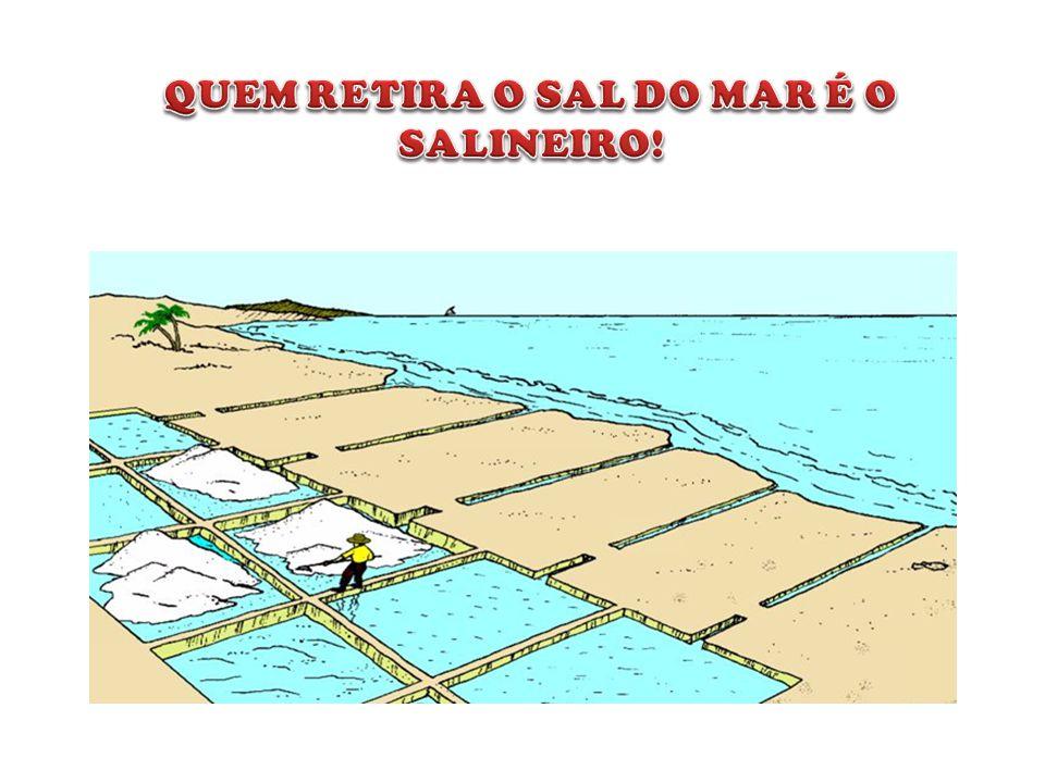 QUEM RETIRA O SAL DO MAR É O SALINEIRO!