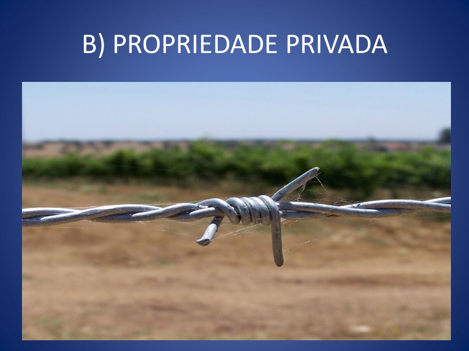 B) PROPRIEDADE PRIVADA
