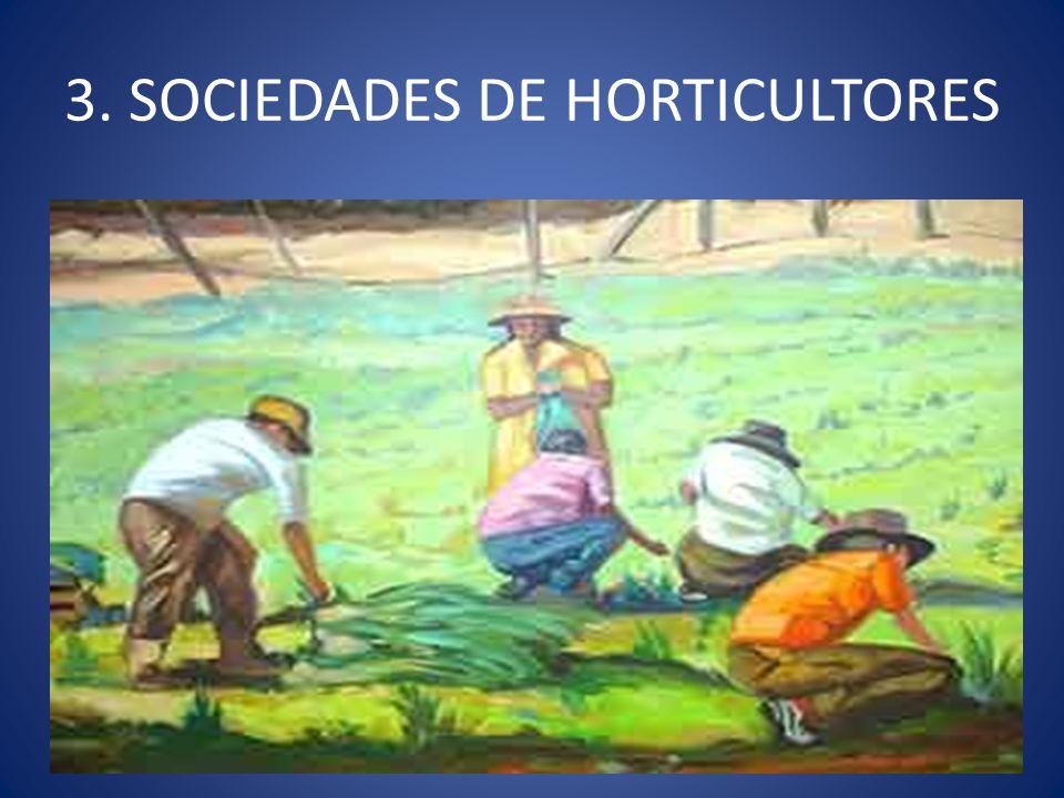 3. SOCIEDADES DE HORTICULTORES