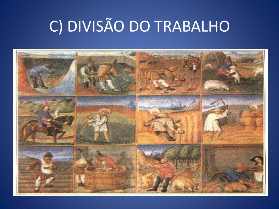 C) DIVISÃO DO TRABALHO
