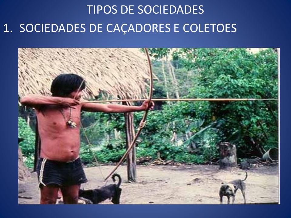 TIPOS DE SOCIEDADES SOCIEDADES DE CAÇADORES E COLETOES