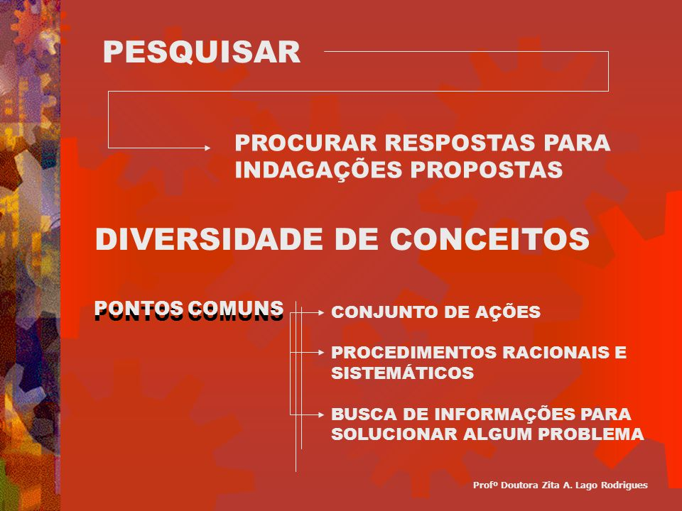 DIVERSIDADE DE CONCEITOS