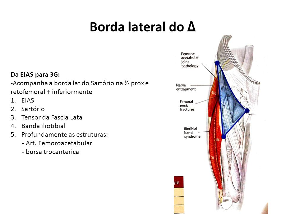Borda lateral do Δ Da EIAS para 3G: