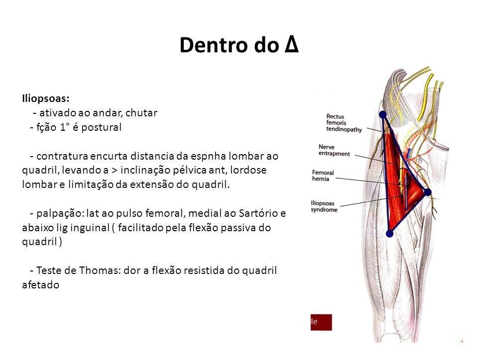 Dentro do Δ Iliopsoas: - ativado ao andar, chutar - fção 1° é postural