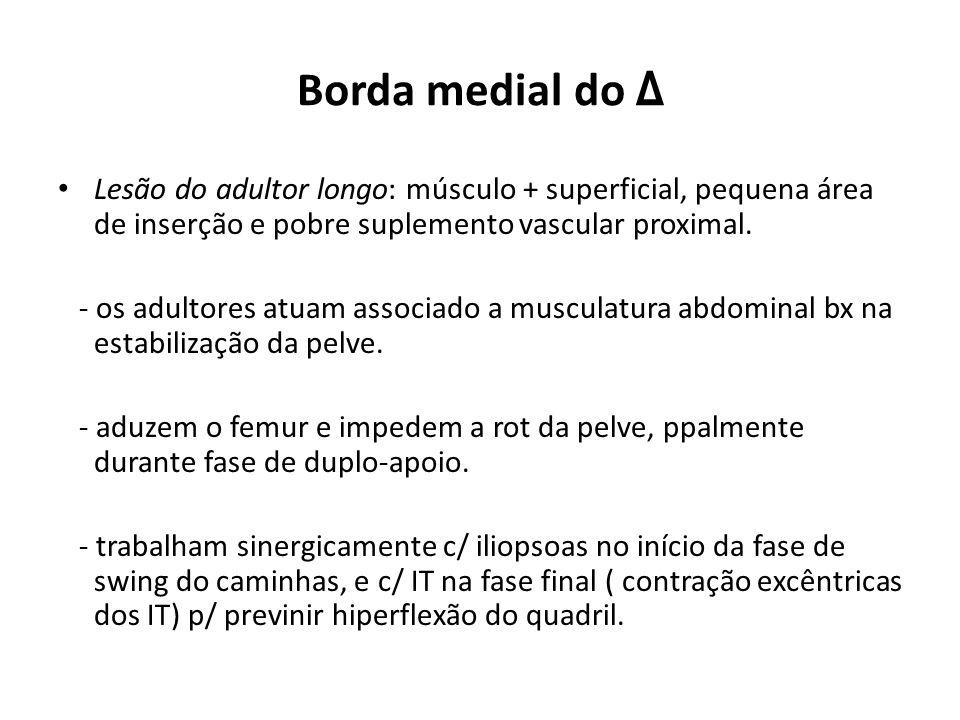 Borda medial do Δ Lesão do adultor longo: músculo + superficial, pequena área de inserção e pobre suplemento vascular proximal.
