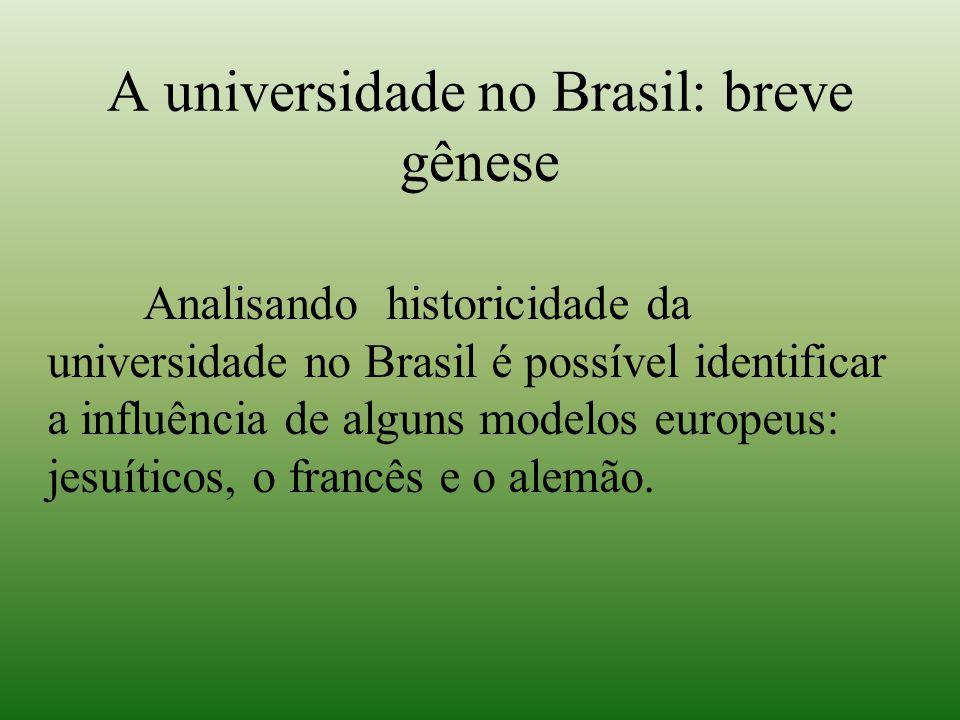 A universidade no Brasil: breve gênese