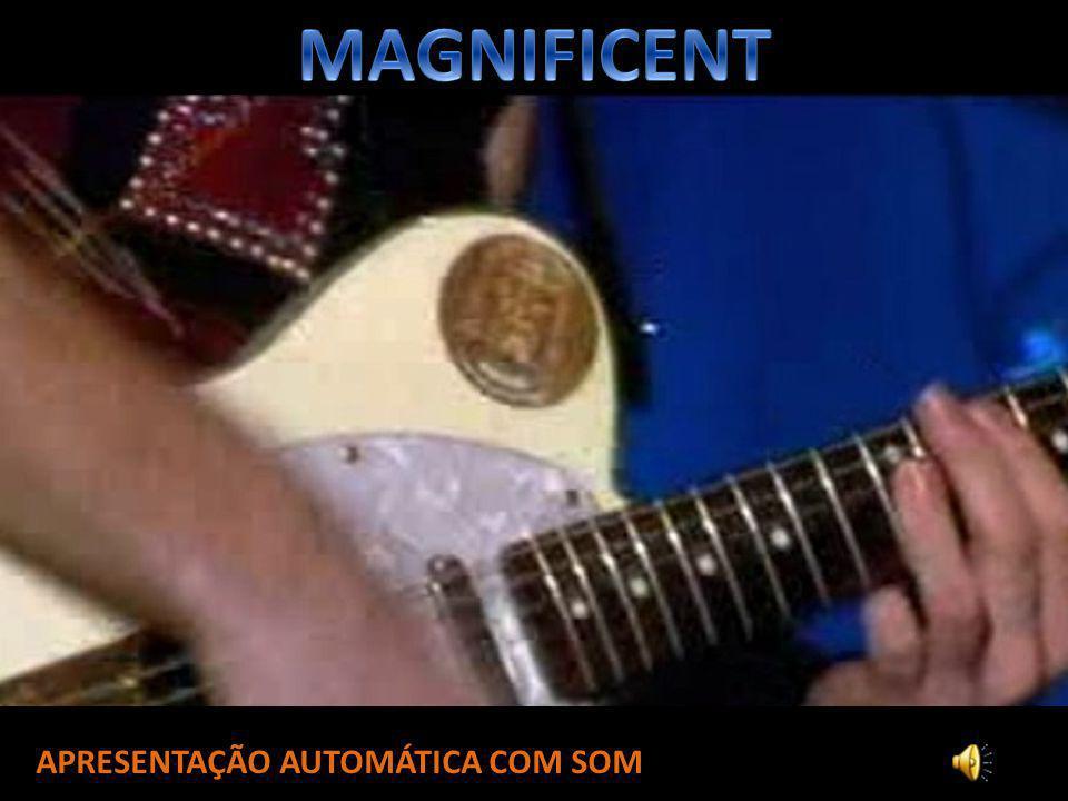 MAGNIFICENT APRESENTAÇÃO AUTOMÁTICA COM SOM
