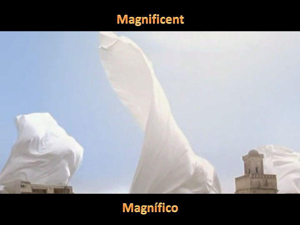 Magnificent Magnífico