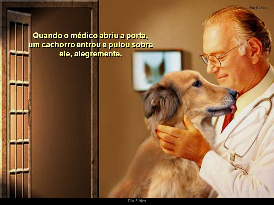 Quando o médico abriu a porta, um cachorro entrou e pulou sobre ele, alegremente.