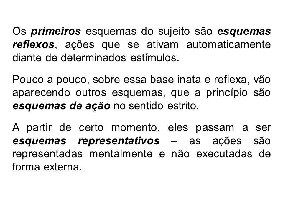 Os primeiros esquemas do sujeito são esquemas reflexos, ações que se ativam automaticamente diante de determinados estímulos.