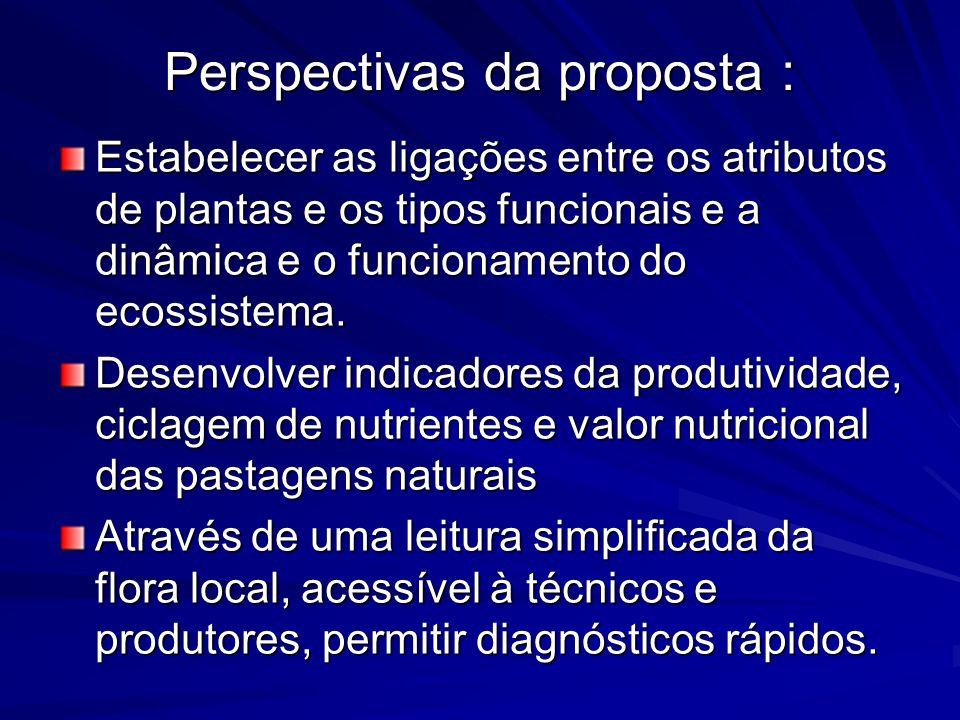 Perspectivas da proposta :