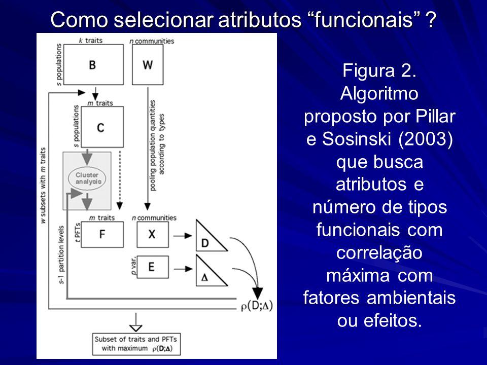 Como selecionar atributos funcionais