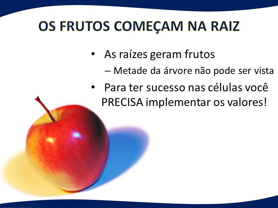 OS FRUTOS COMEÇAM NA RAIZ